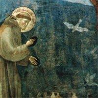 saints-and-animals
