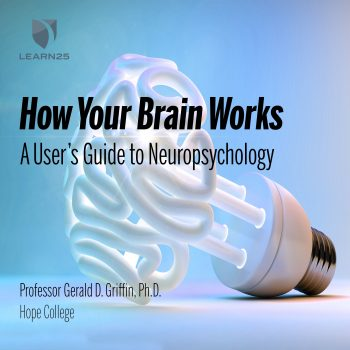 How Your Brain Works: A User's Guide to Neuropsychology