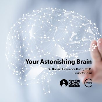 Your Astonishing Brain